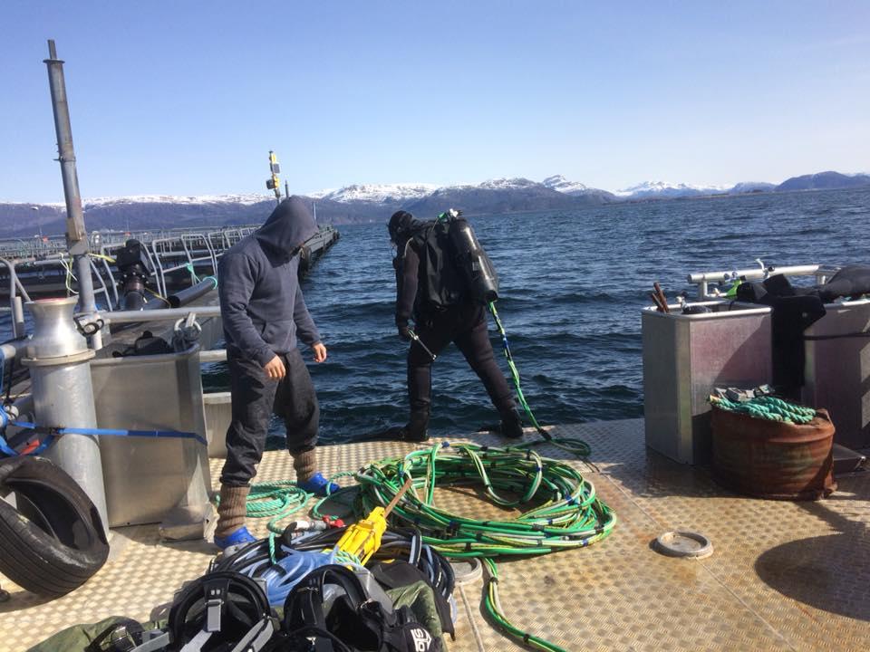 Dykking og inspeksjon fiskeoppdrett. Sjøtjenester Florø - sjotjenesterfloro.no
